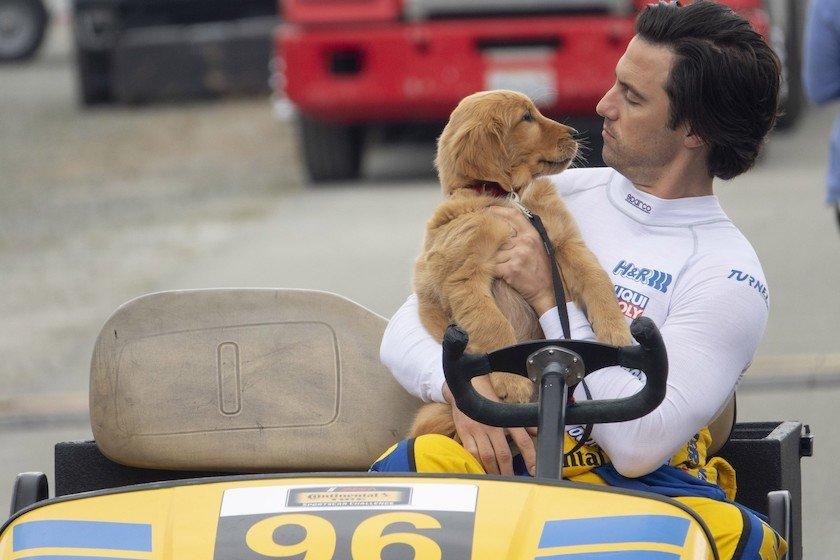 The Art of Racing in the Rain